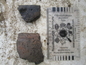 Rim Sherds from 61015